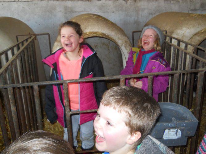 Quelques photographies de notre séjour à la ferme