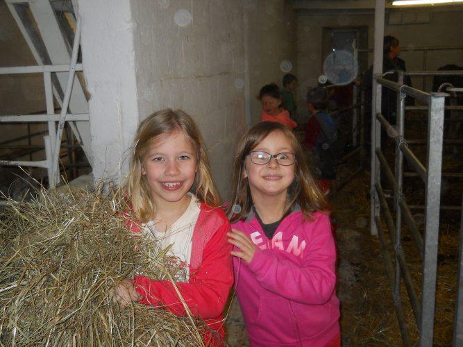Premier jour à la ferme