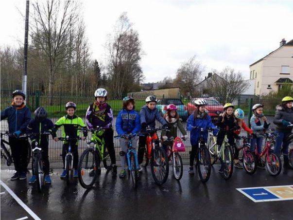 Brevet du Cycliste